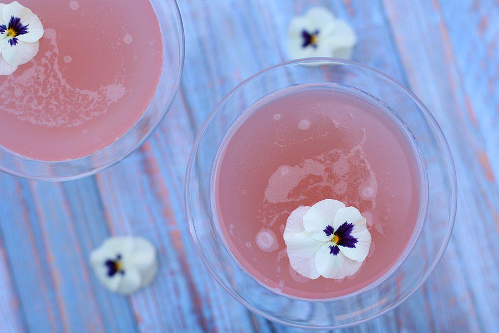 forfriskende rabarber martini